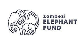 zambezi elephant fund
